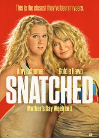 Snatched (2017)